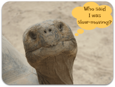 slow-moving consignment inventory can hurt more than your bottom line
